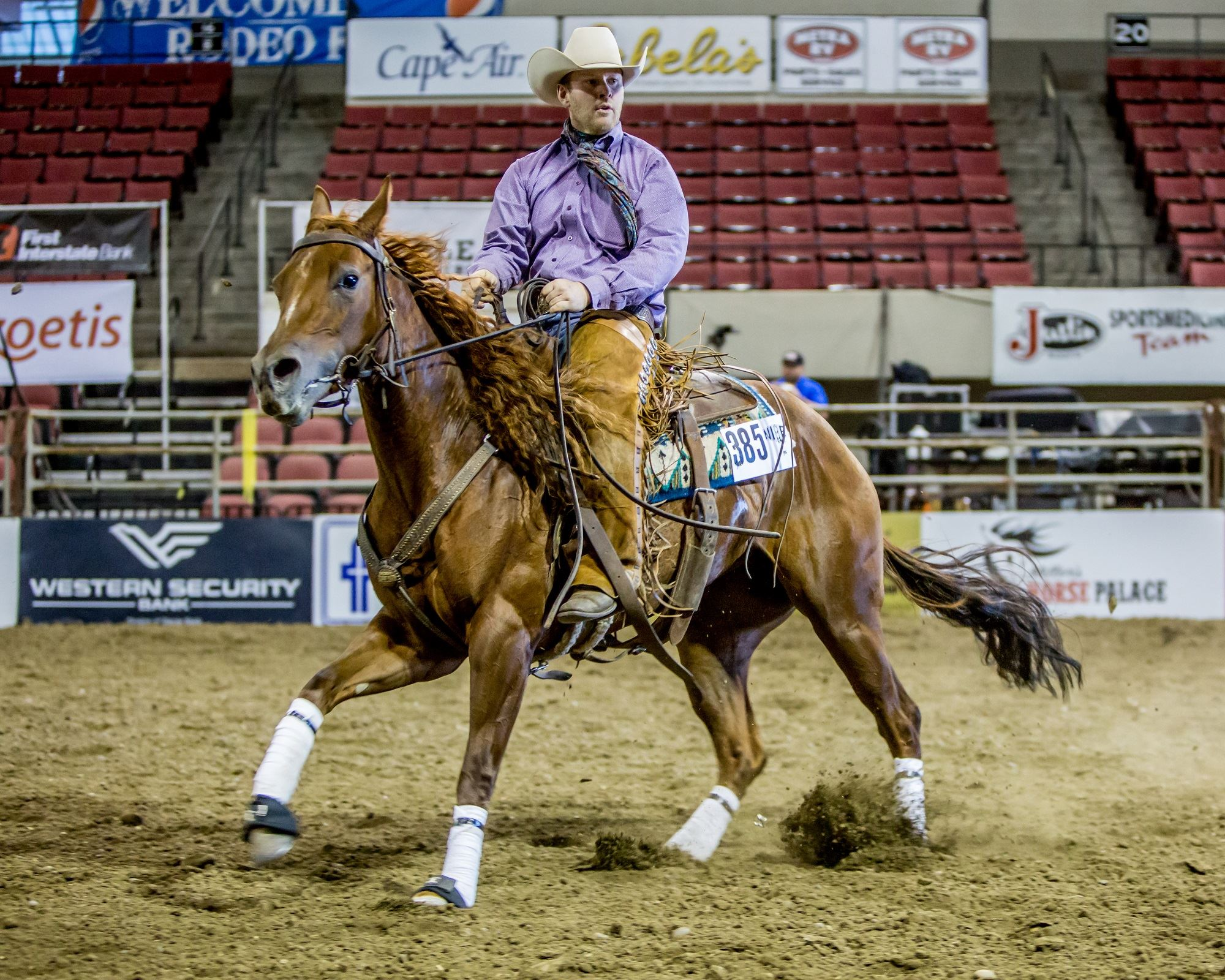 Gold Buckle Select Futurities