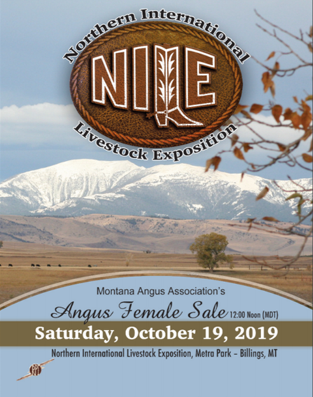 Click Here for the 2019 NILE Angus Female Sale Catalog!