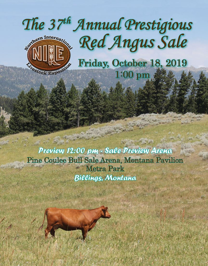 Click Here for the 2019 Red Angus Sale Catalog!