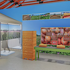 Artist rendering of a museum exhibit featuring seed potatoes