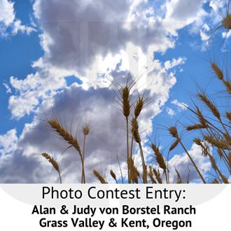 Photo Contest 2019