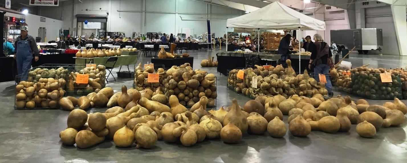 Gourds laid out in a booth at the show
