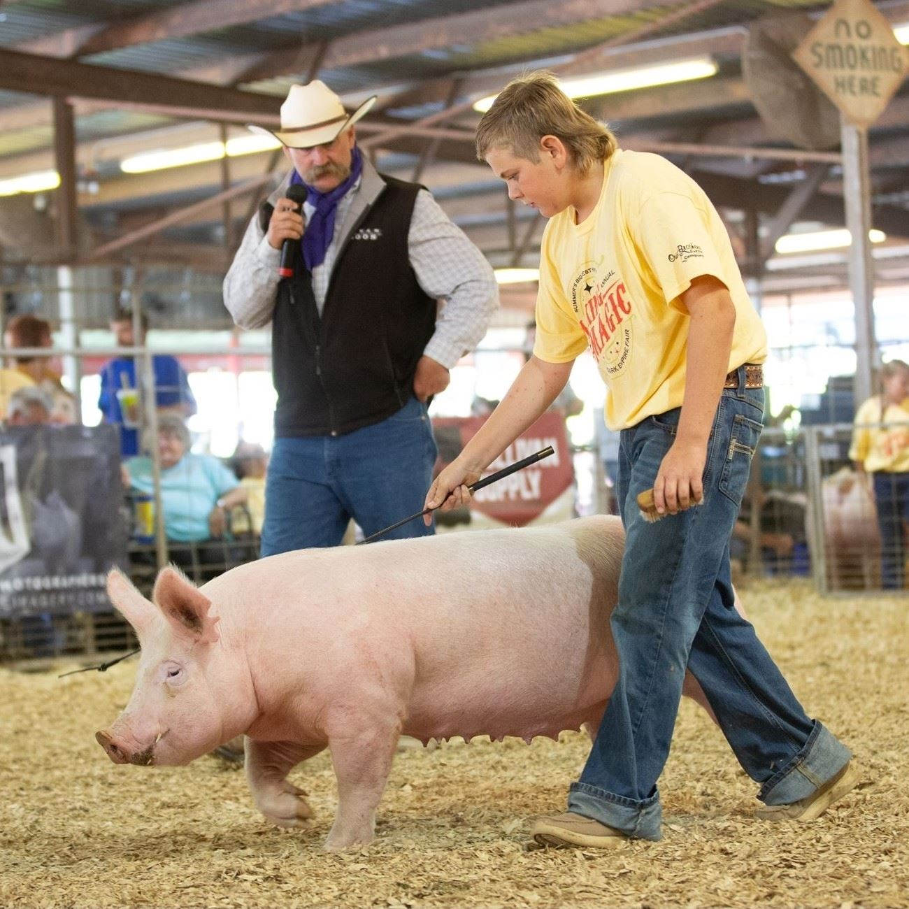 Boy showing a white pig while the judge examines the animal from the background.