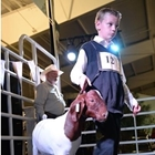 A young man leads his goat around the show ring.