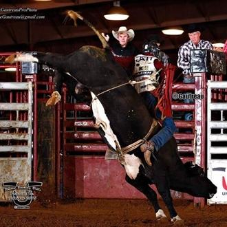 Cowboy riding a black bucking bull
