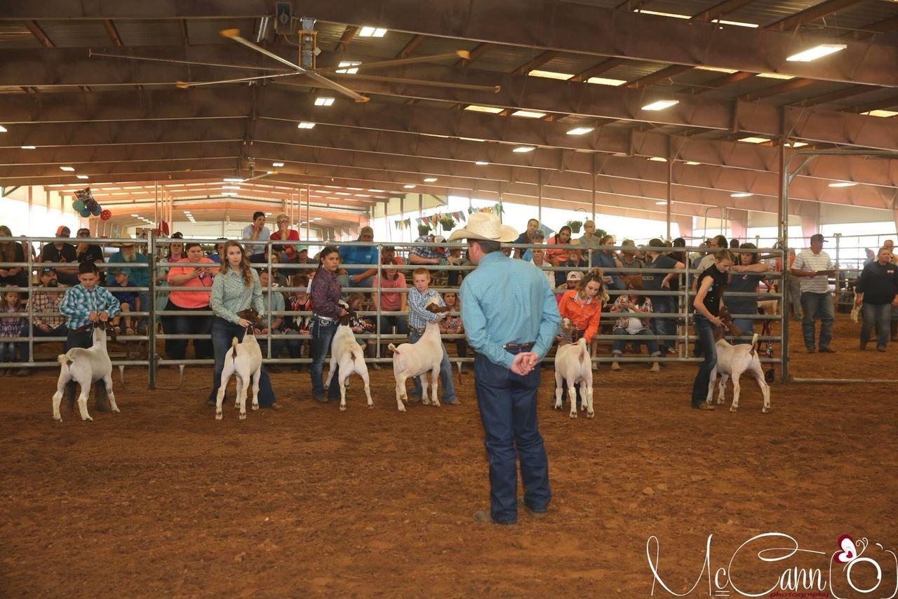 Anderson County Livestock Arena
