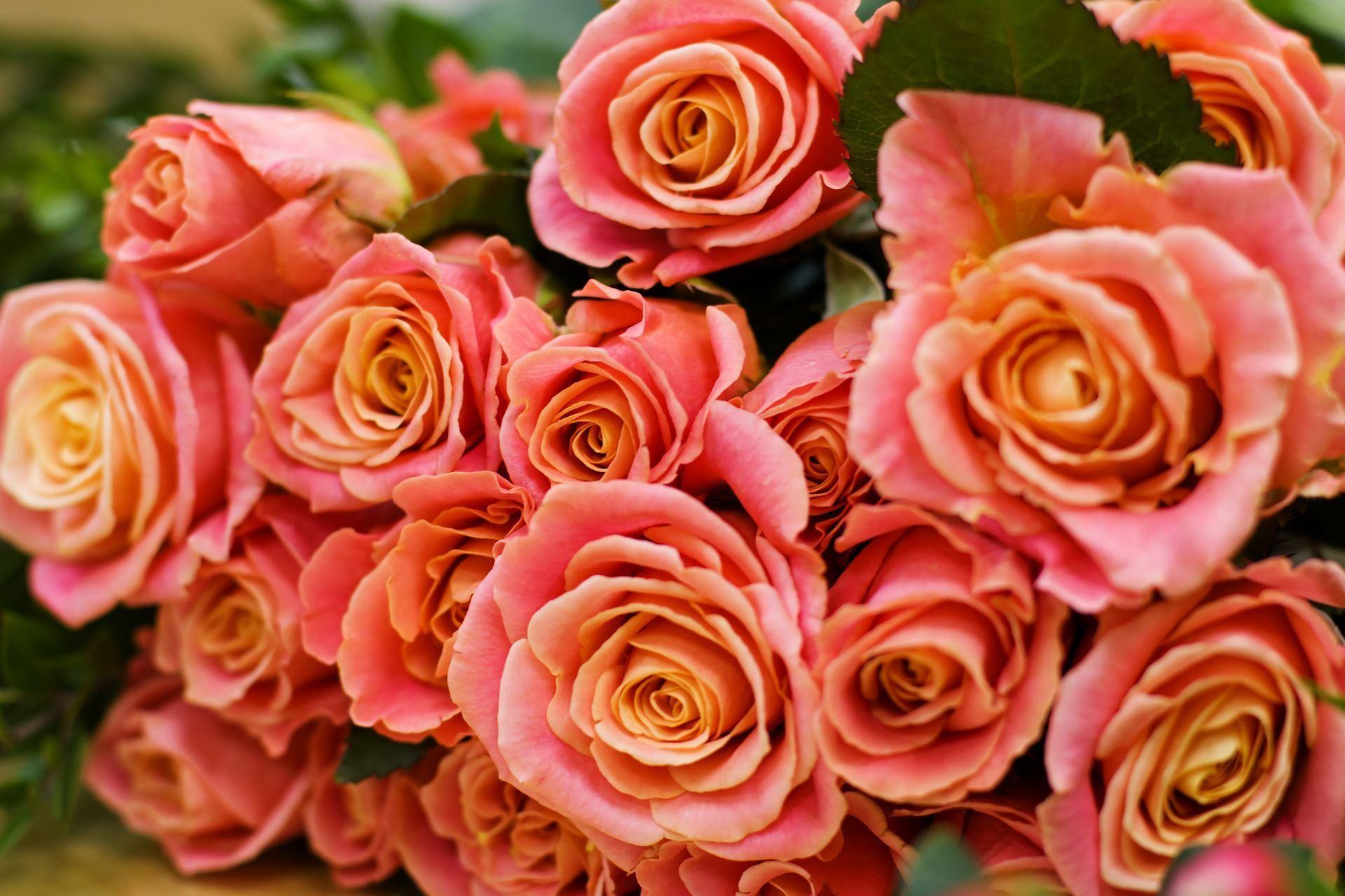 Verda's Flowers & Gifts
