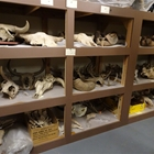 Biology Collection