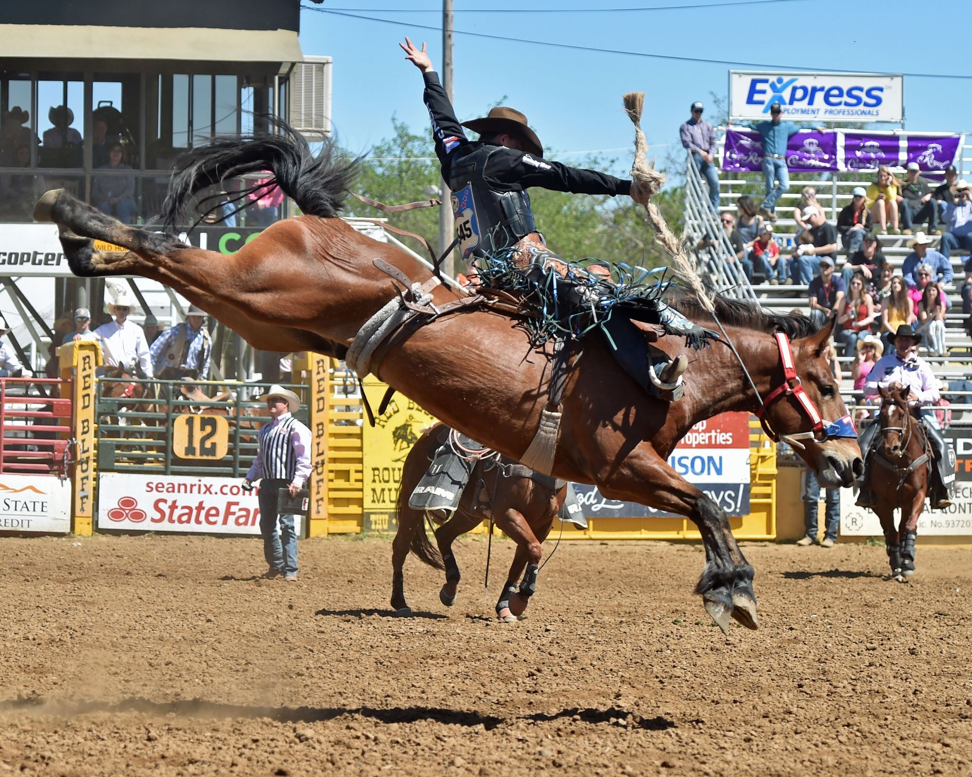 Saddle Bronc Riding- Zeke Thurston