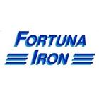 Fortuna Iron