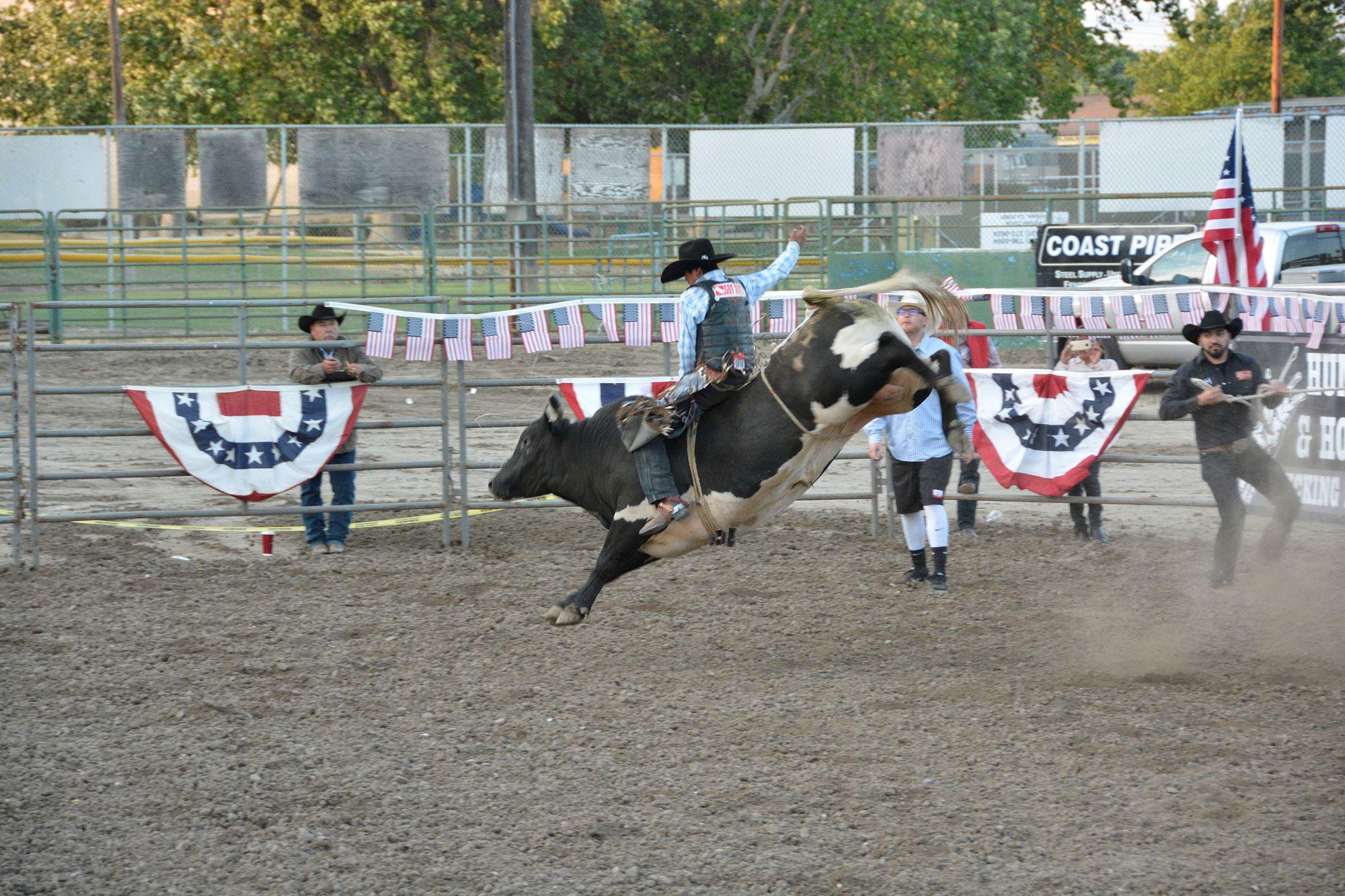 Bull rider holding on