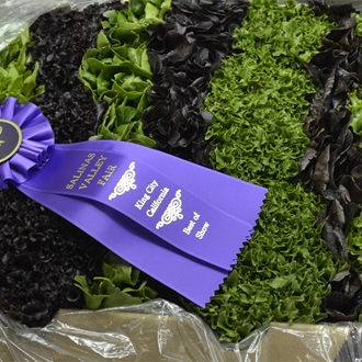 Spring mix crate of lettuce displayed with a best of show ribbon