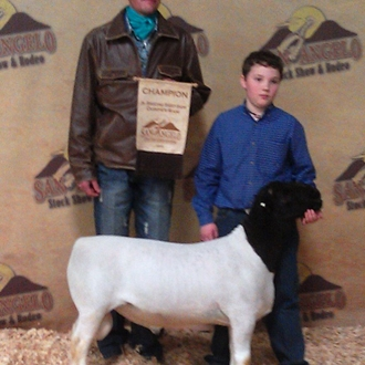 2012 Jr. Grand Champion Dorper Ram - Bred by 3C Ranch and exhibited by Cade Womack