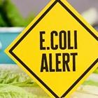 SBCF Responds to E.Coli Contamination