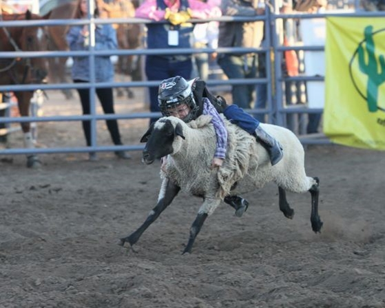 The Santa Maria Elks Rodeo is just around the corner and entries are OPEN for the rodeo's most loved event: Mutton Bustin'!