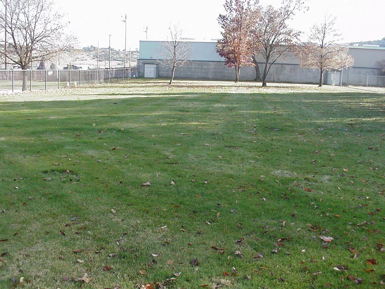 Bicentennial Lawn