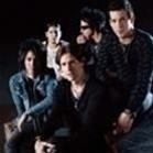 Avenged Sevenfold - 2009