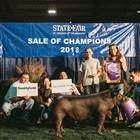 State Fair of Virginia Scholarship Program
