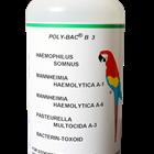Poly-Bac®B 3