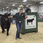 4-H Beef Auction