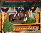 Hunters & Hunt Seat Equitation & Host of the USHJA Zone 1 HOTY Finals