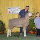 Best Fleece Corriedale and Junior Show Reserve Champion Corriedale Ewe