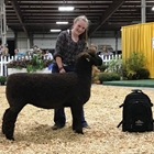 Junior Showmanship Winner