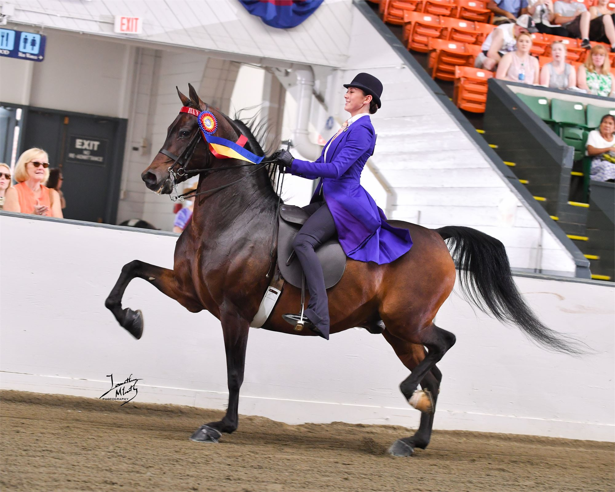 Eastern States Exposition Horse Show