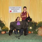 Junior Show Champion Natural Colored Romney Ewe