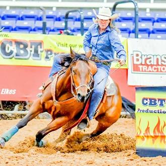 barrel, racing horse,