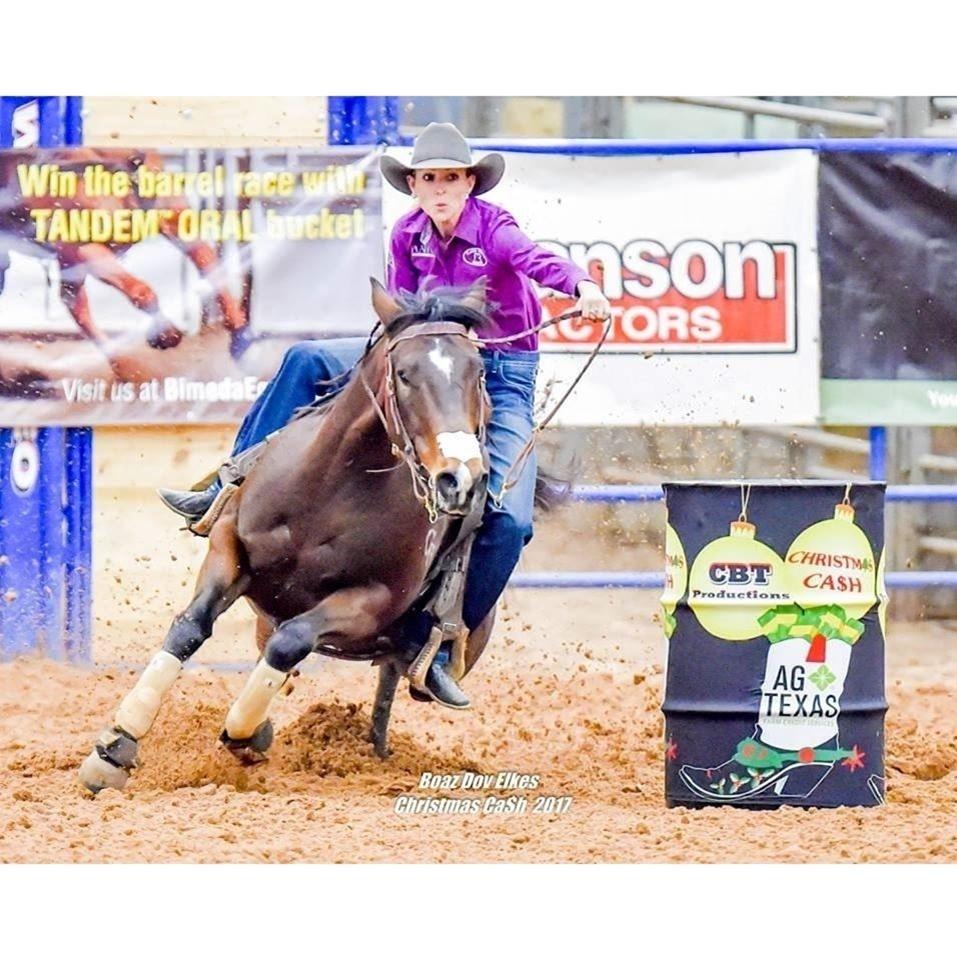 lady , purple shirt, horse, barrel