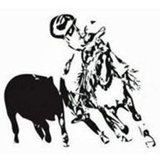 black calf, black horse, cowboy, cowboy hat