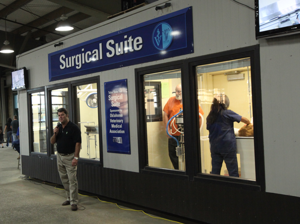 Surgical Suite Surgeries