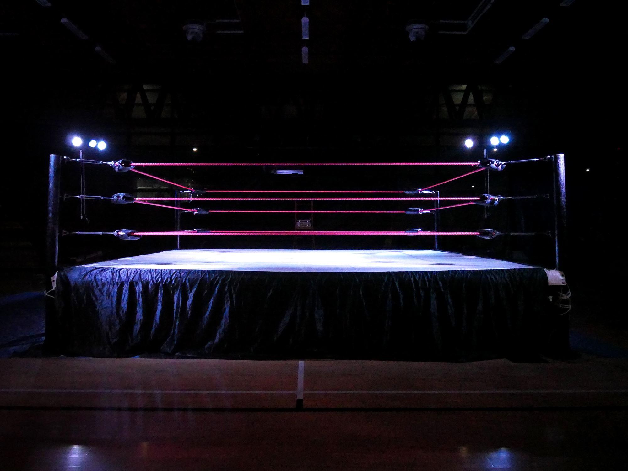 Steel Rage Pro Wresting