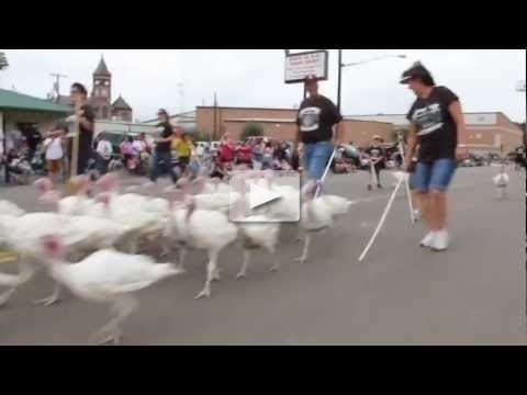 The 100th Anniversary Cuero Turkey Trot