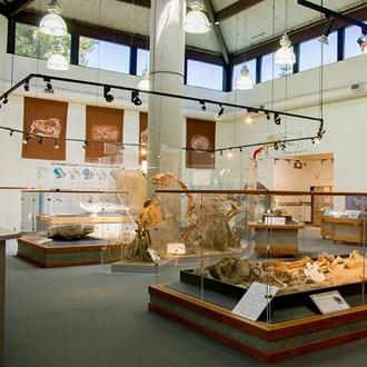 Inside Exhibit at Ralph B Clark Interpretive Center in Buena Park, CA