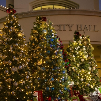 Christmas trees in front of city hall in Buena Park