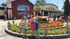 Splash Down at Knott's Soak City Waterpark