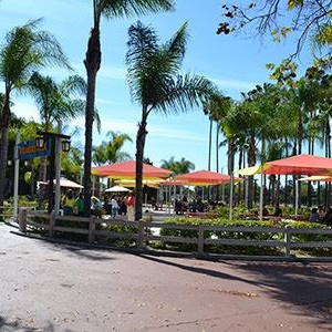 Tables with umbrellas and palm trees at Breakers Park Knott's Berry Farm in Buena Park