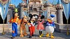 Goofy, Pluto, Micky, Minnie, Donald in front of Disney Castle