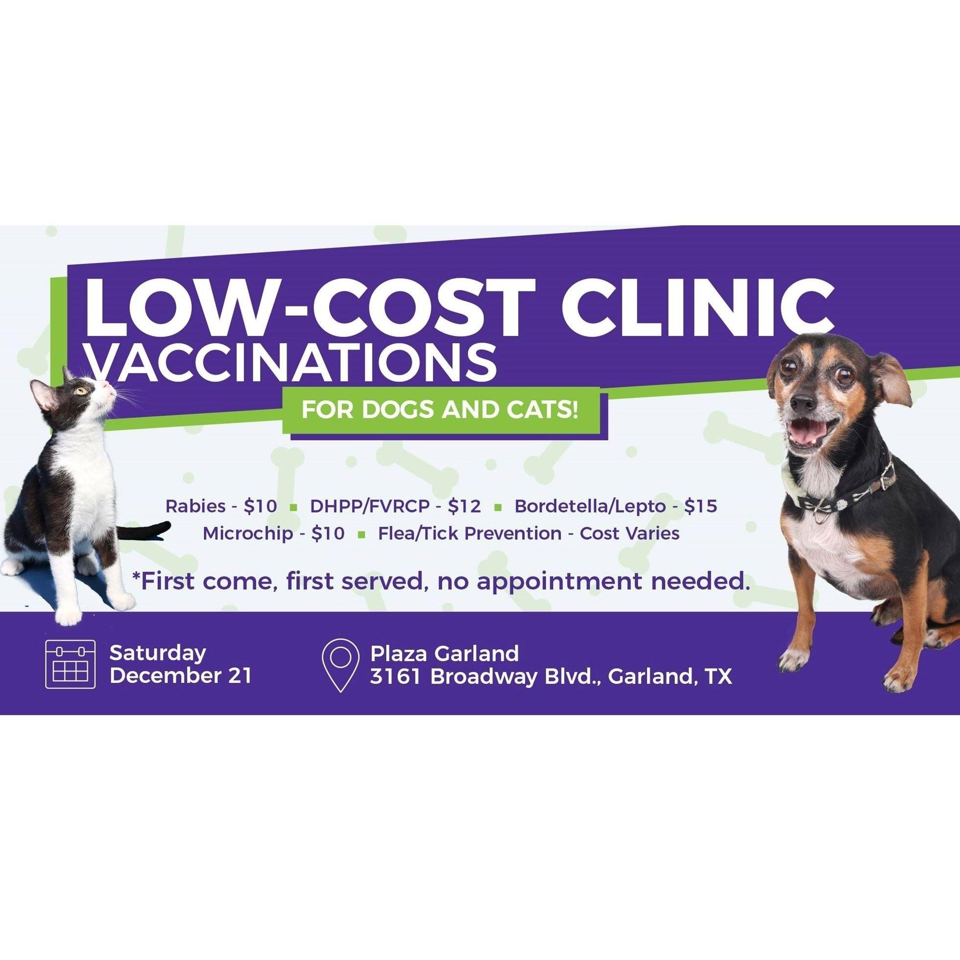 lepto dog vaccine cost