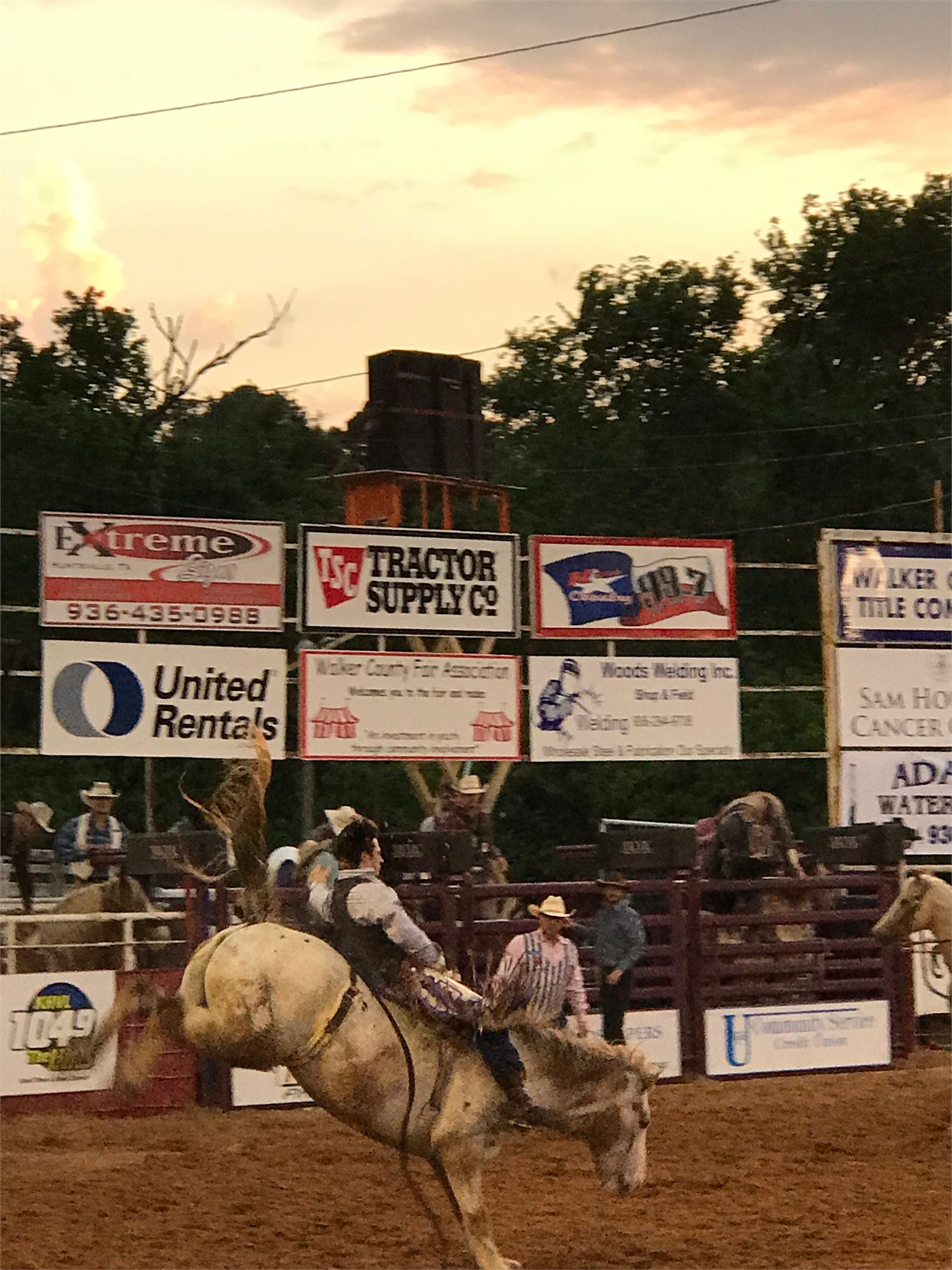 Walker County Fair Rodeo