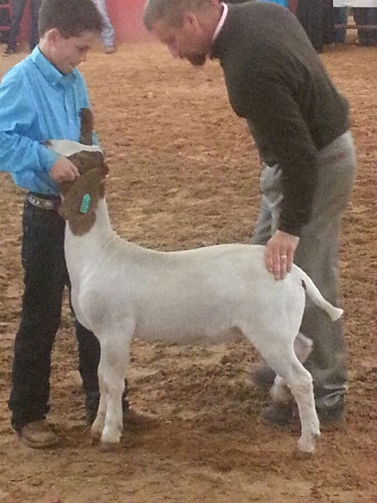 Gage Lee, his 2015 WCF goat and Judge Shawn Ramsey