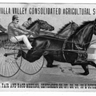 Walla Walla Valley Consolidated Agricultural Society 1892
