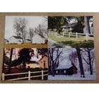 4 Season Postcard
