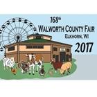 2017 Fair Pin