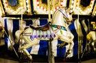 Century Carousel (4-Ticket Ride)