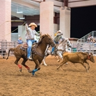 Two cowboys roping a steer in Main Arena