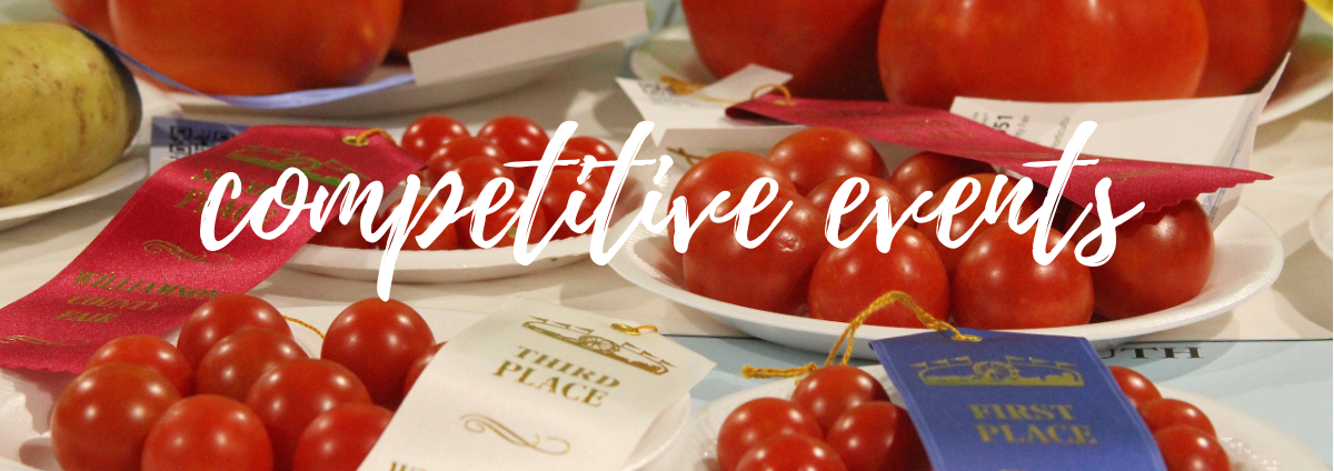 Winning red tomatoes representing competitive events