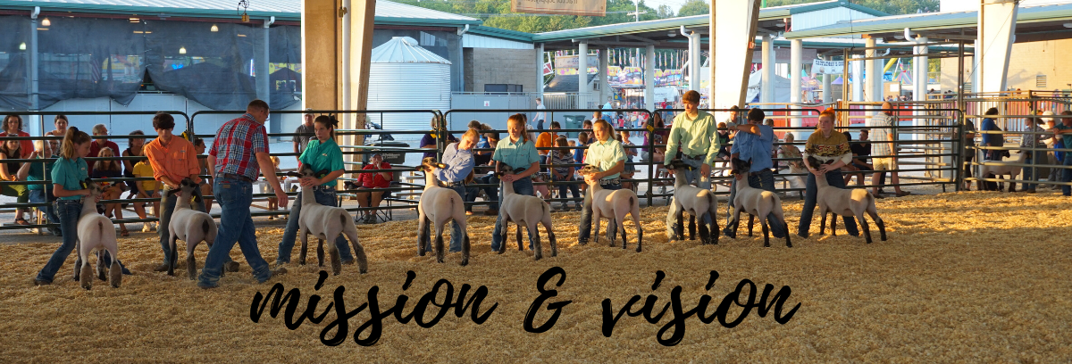 Kids showing sheep at the livestock show in 2019